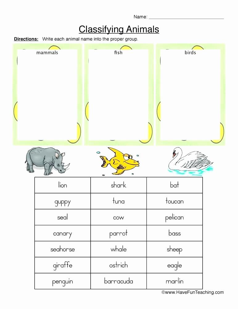 Mammals Worksheets for 2nd Grade New 25 Mammals Worksheets for 2nd Grade