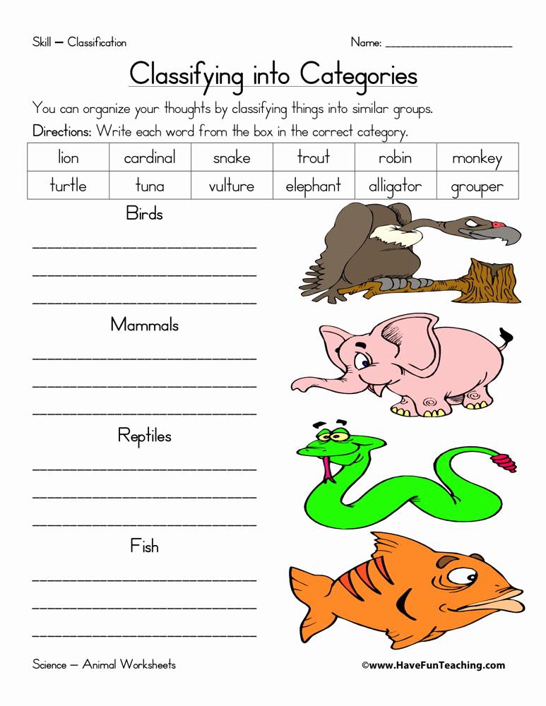 Mammals Worksheets for 2nd Grade Unique 20 Mammals Worksheets for 2nd Grade