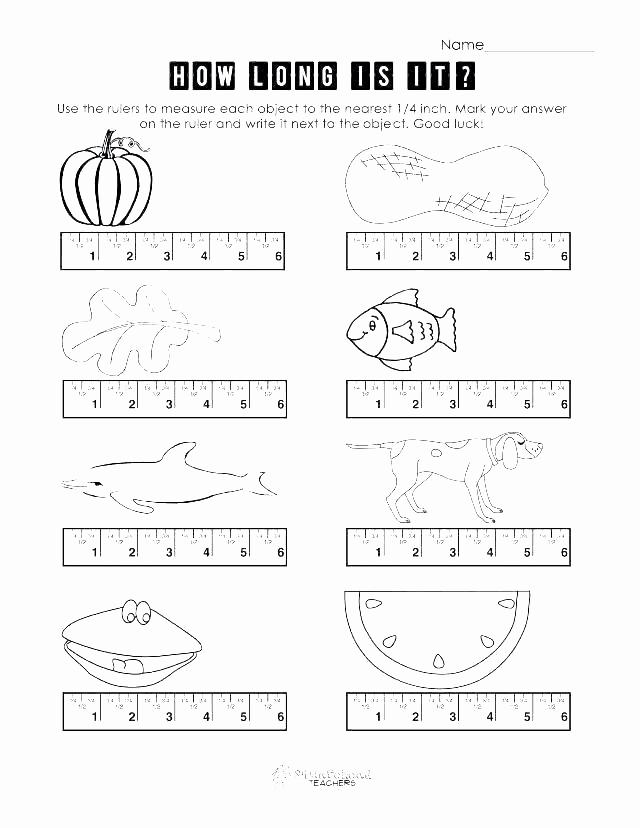 Measurement Worksheet Grade 3 Elegant 25 Measurement Worksheet Grade 3