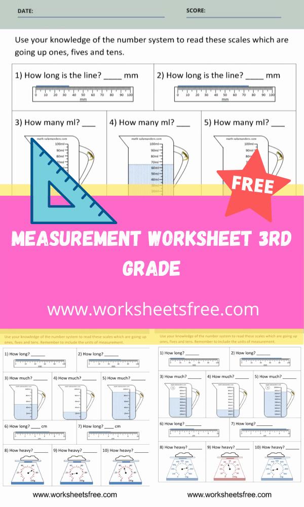 Measuring Worksheets for 3rd Grade Unique Measurement Worksheet 3rd Grade
