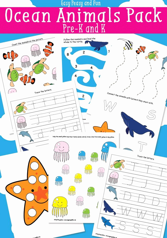 Ocean Worksheets for Preschool Luxury Ocean Animals Printables for Kids