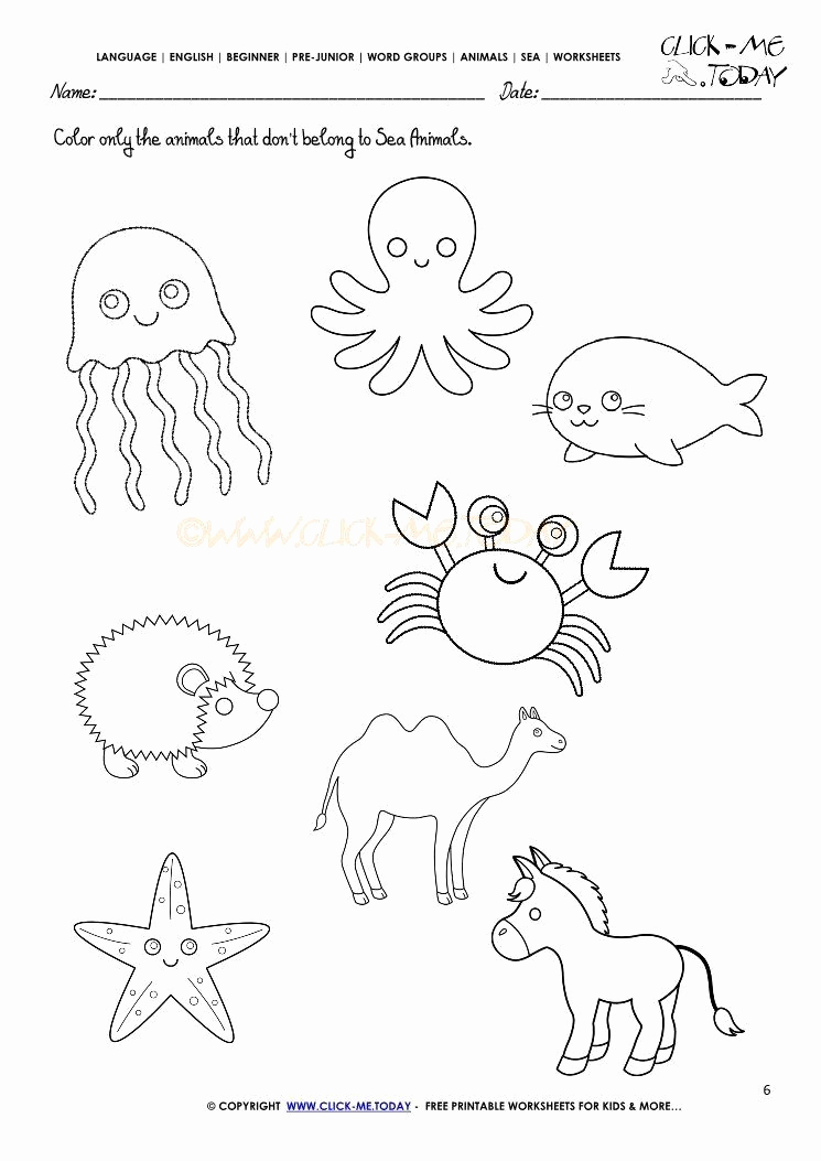Ocean Worksheets for Preschool Unique Ocean Worksheets for Preschool 41 [pdf] Sea Animal