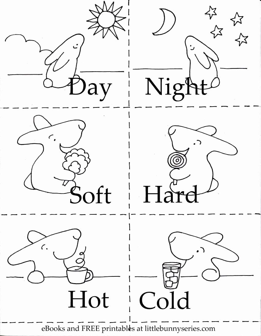 Opposites Preschool Worksheets Elegant Opposites Worksheets for Kindergarten Pdf