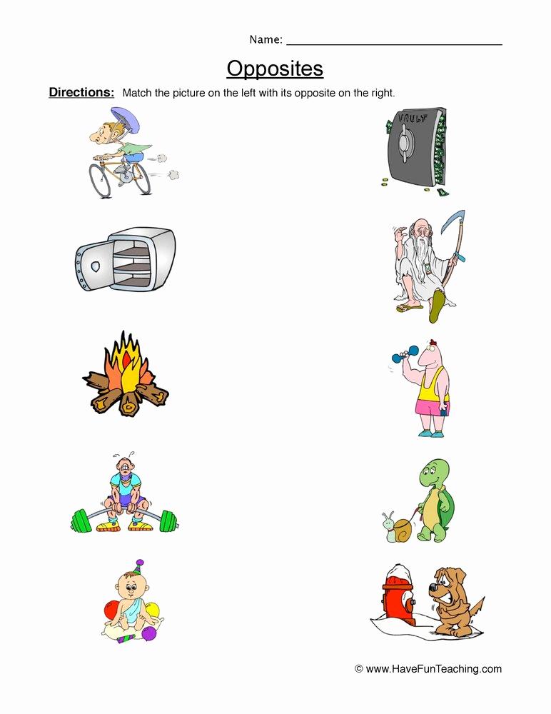 Opposites Preschool Worksheets Fresh Opposites Worksheets
