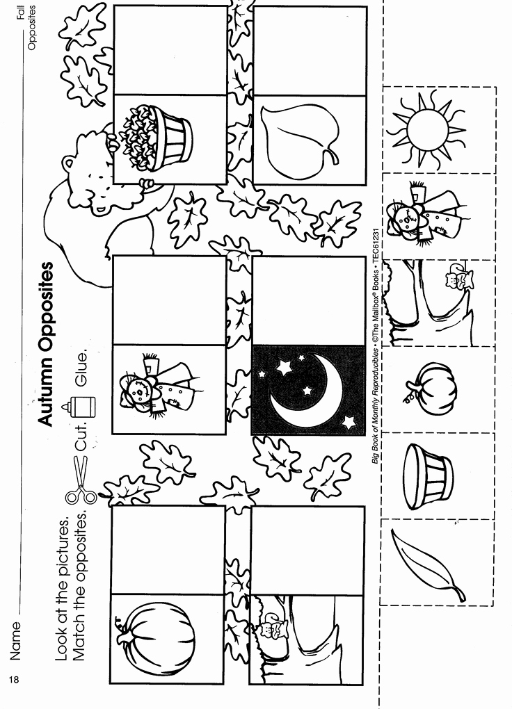 Opposites Preschool Worksheets Unique 18 Best Opposites theme Images On Pinterest