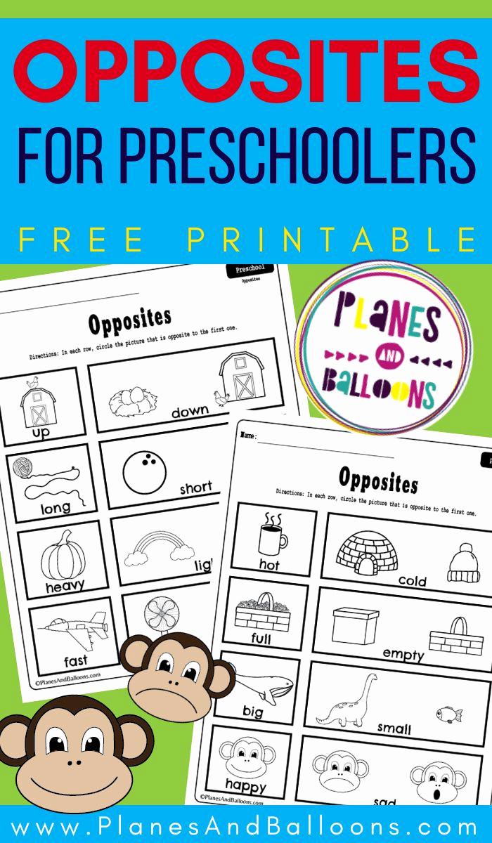 Opposites Preschool Worksheets Unique Preschool Opposites Printable Worksheets Free Pdf