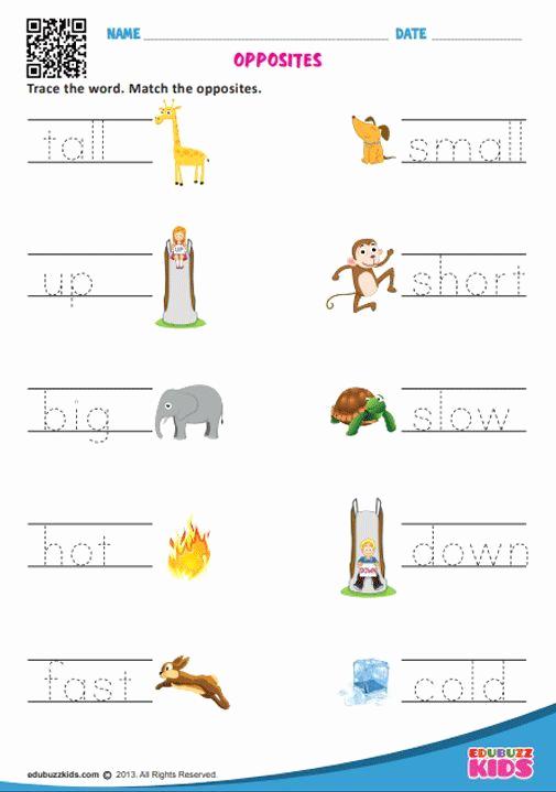 Opposites Worksheet for Kindergarten Beautiful Printable English Opposite Words Worksheets for Preschool