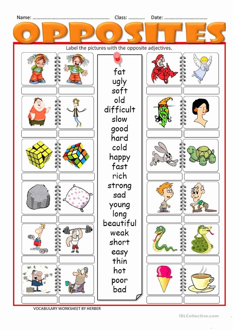 Opposites Worksheet for Kindergarten Fresh 61 Opposites Worksheets for Kindergarten Pdf