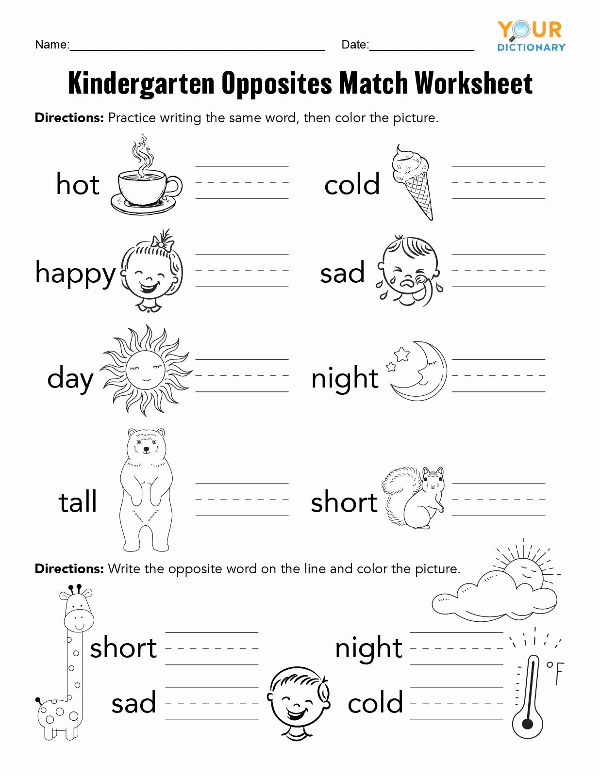 Opposites Worksheet for Kindergarten New Kindergarten Opposites Activities