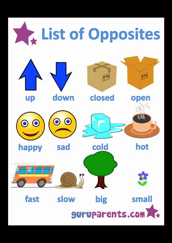 Opposites Worksheet for Preschool Awesome Opposites Worksheets
