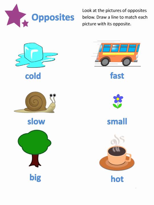 Opposites Worksheet for Preschool Beautiful Opposite Worksheets for Preschoolers