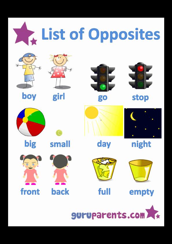 Opposites Worksheet for Preschool Elegant Opposites Worksheets