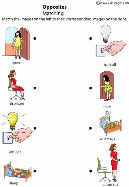 Opposites Worksheet for Preschool Lovely Opposites Worksheets