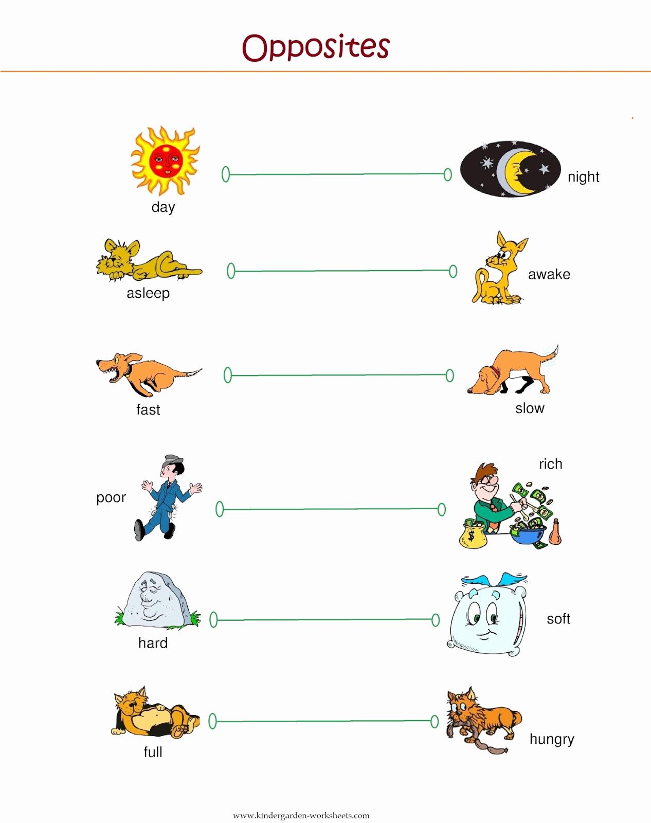 Opposites Worksheet for Preschool Luxury Kindergarten Worksheets Kindergarten Worksheets Opposite
