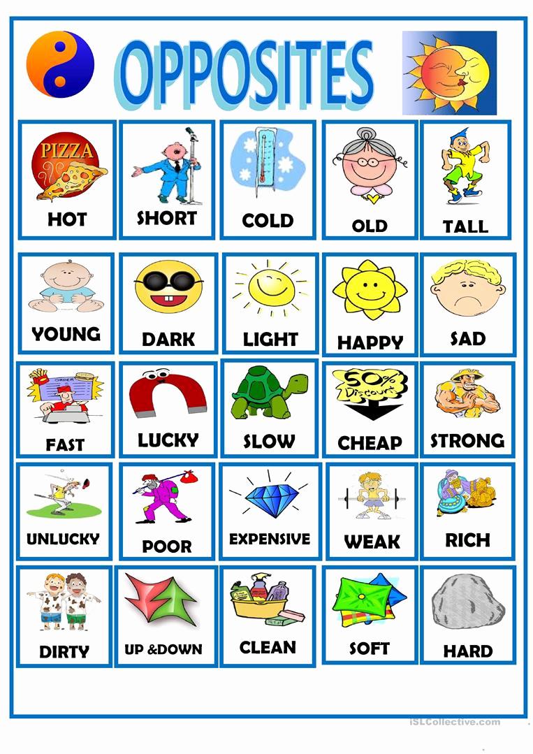 Opposites Worksheet for Preschool New Opposites English Esl Worksheets for Distance Learning