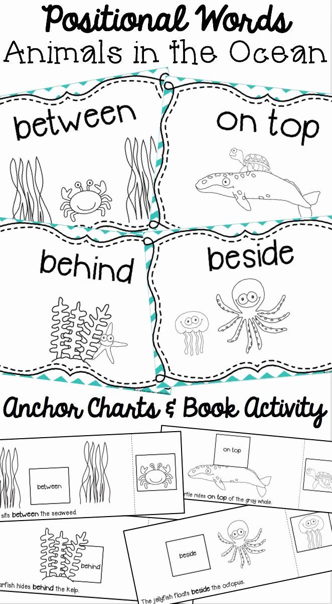 Positional Words Worksheets for Preschool Lovely 20 Positional Words Preschool Worksheets