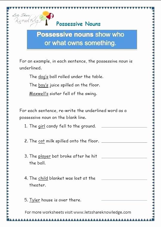 Possessive Pronouns Worksheet 5th Grade Best Of 20 Possessive Pronouns Worksheet 5th Grade