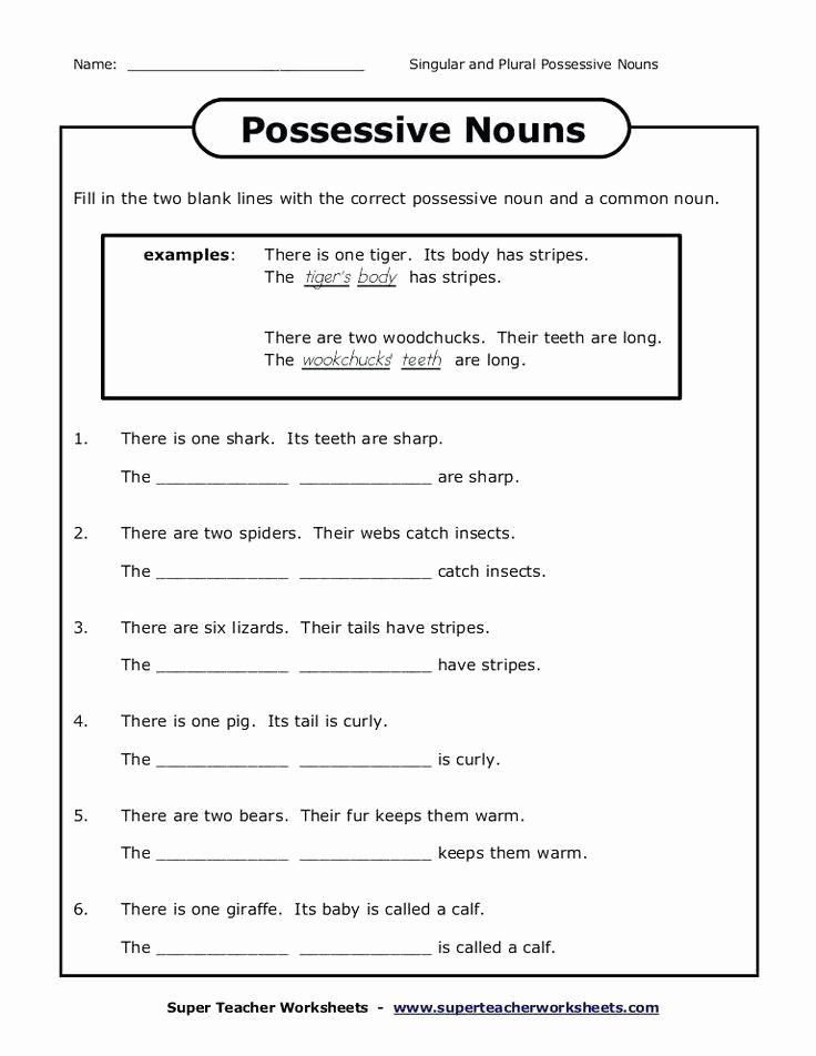 Possessive Pronouns Worksheet 5th Grade Luxury Possessive Pronouns Worksheet 5th Grade Plural Possessive