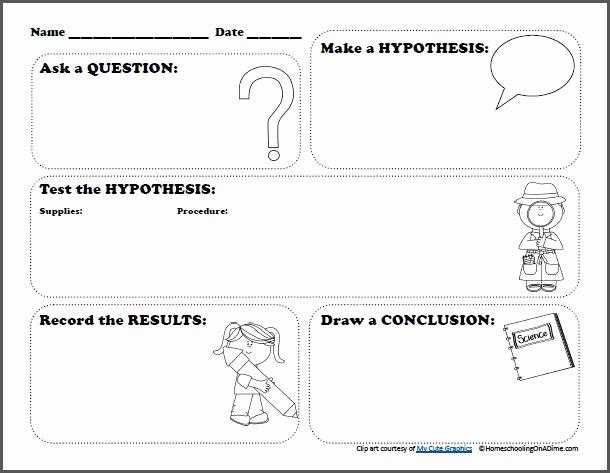 Predictions Worksheets 1st Grade Unique New 953 First Grade Prediction Worksheet