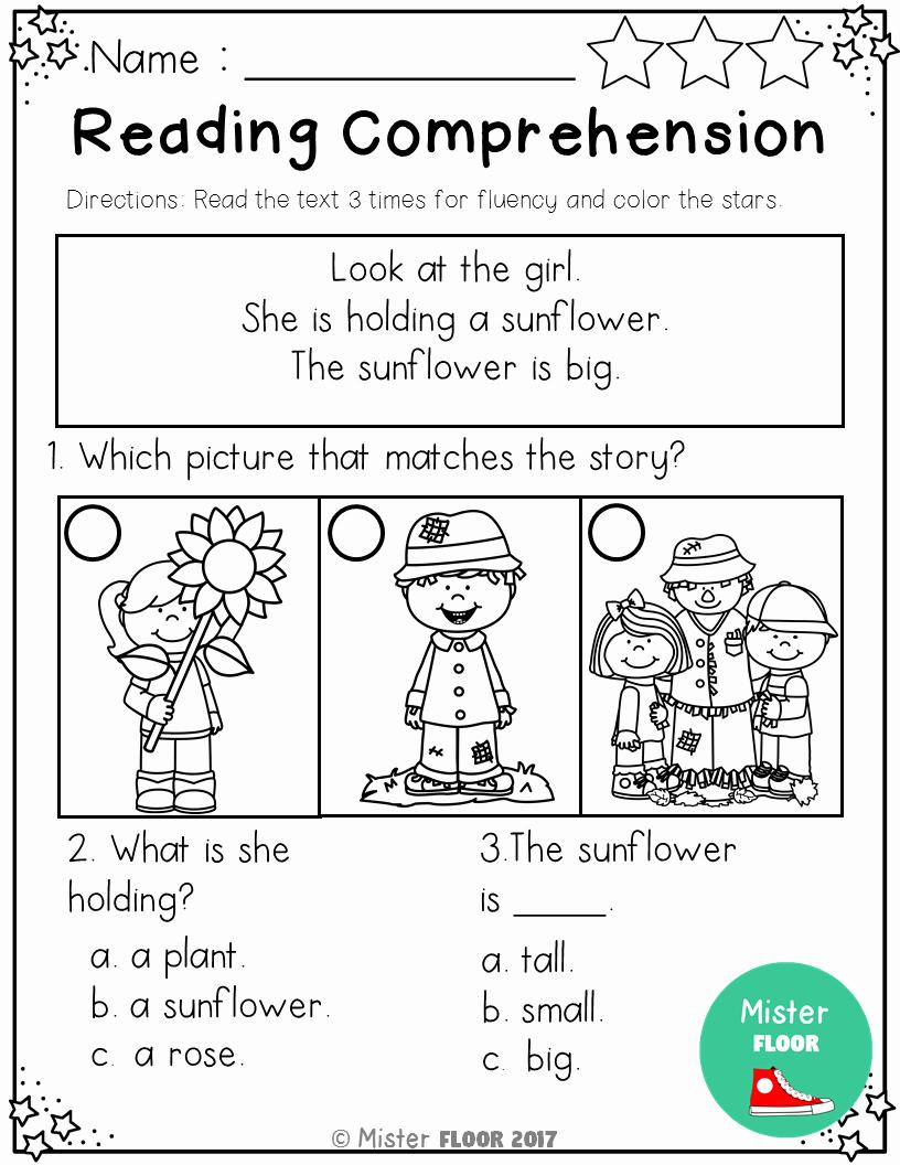 Preschool Reading Comprehension Worksheets Beautiful Kindergarten Reading Prehension Fall