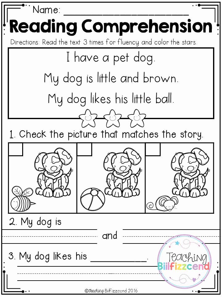 Preschool Reading Comprehension Worksheets Elegant Free Kindergarten Reading Prehension Set 2