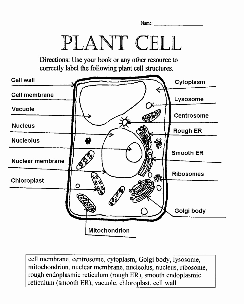 Printable Cell Worksheets Fresh Label Plant Cell Worksheet 1 Biological Science Picture