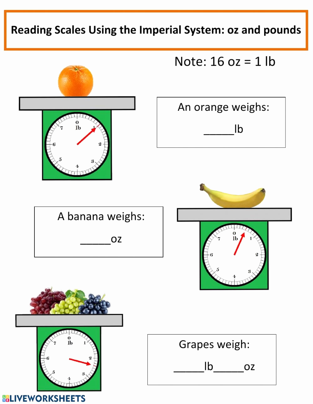 Reading Scales Worksheets Best Of 20 Reading A Scale Worksheet Dzofar Printable Worksheets