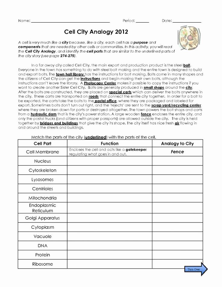Science 7th Grade Worksheets New 10 7th Grade Science Dna Worksheet Grade