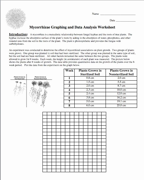 Science Graph Worksheets Inspirational Science Stuff Here S A New Freebie for You
