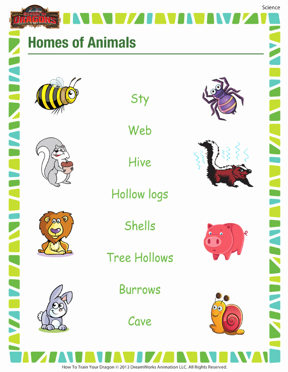 Science Worksheet 1st Grade Beautiful Homes Of Animals– Free Printable Science Worksheet for