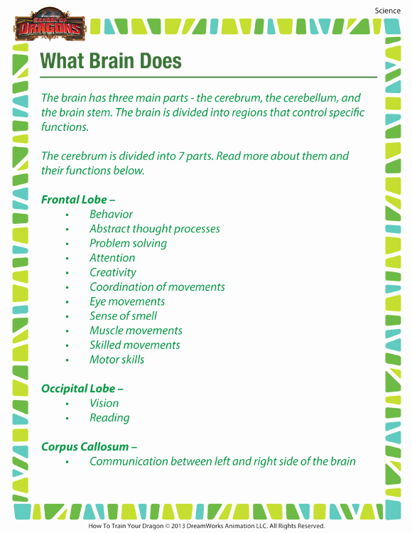 Science Worksheets for 5th Grade New 5th Grade Science Worksheets Printable Free that are