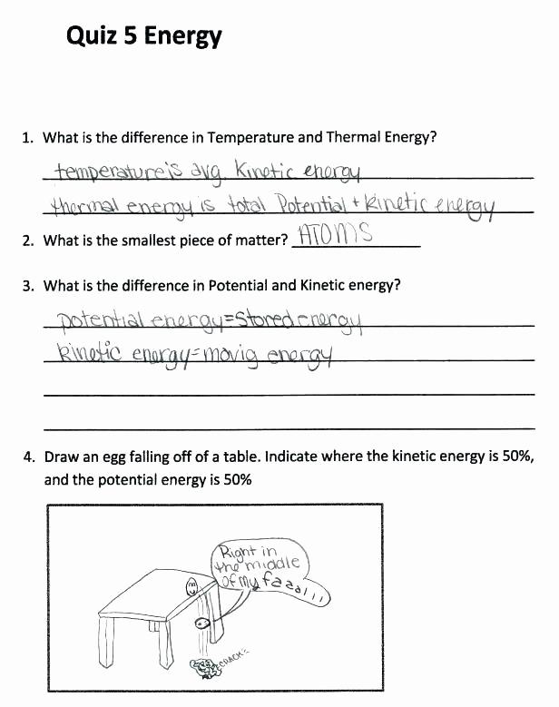 Scientific Method Worksheets 5th Grade Beautiful Scientific Method Worksheet Pdf