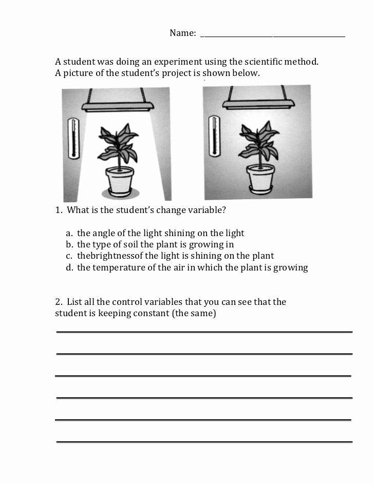 Scientific Method Worksheets 5th Grade Unique Scientific Method Variables Worksheet