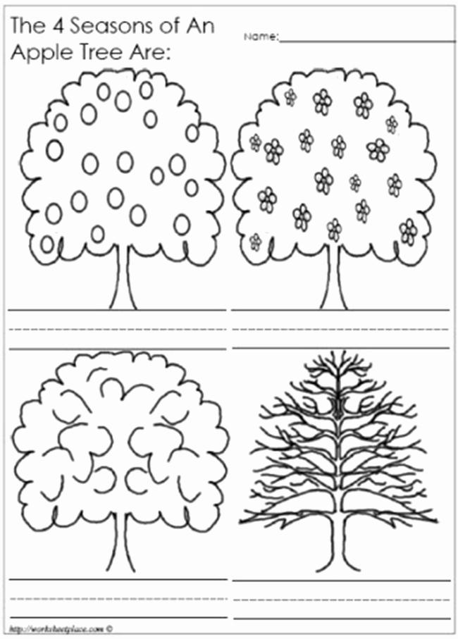 Seasons Worksheets for Preschoolers Beautiful 7 Best Of Printable Preschool Apple Sequencing