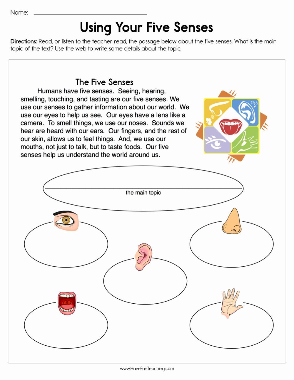 Sensory Detail Worksheet Elegant Using Your Five Senses Worksheet