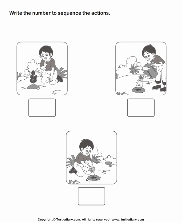 Sequencing Pictures Worksheets Best Of Picture Sequencing Boy Planting A Tree Worksheet Turtle