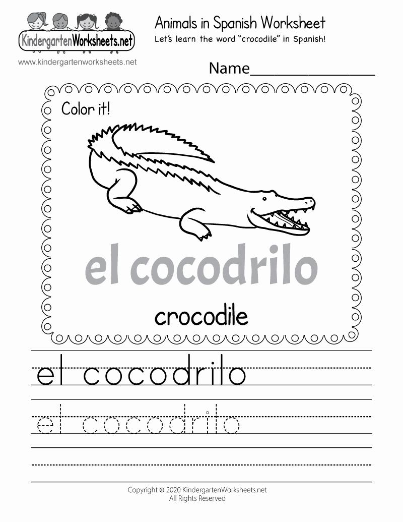 Spanish Kindergarten Worksheets Beautiful Printable Spanish Worksheet Free Kindergarten Learning
