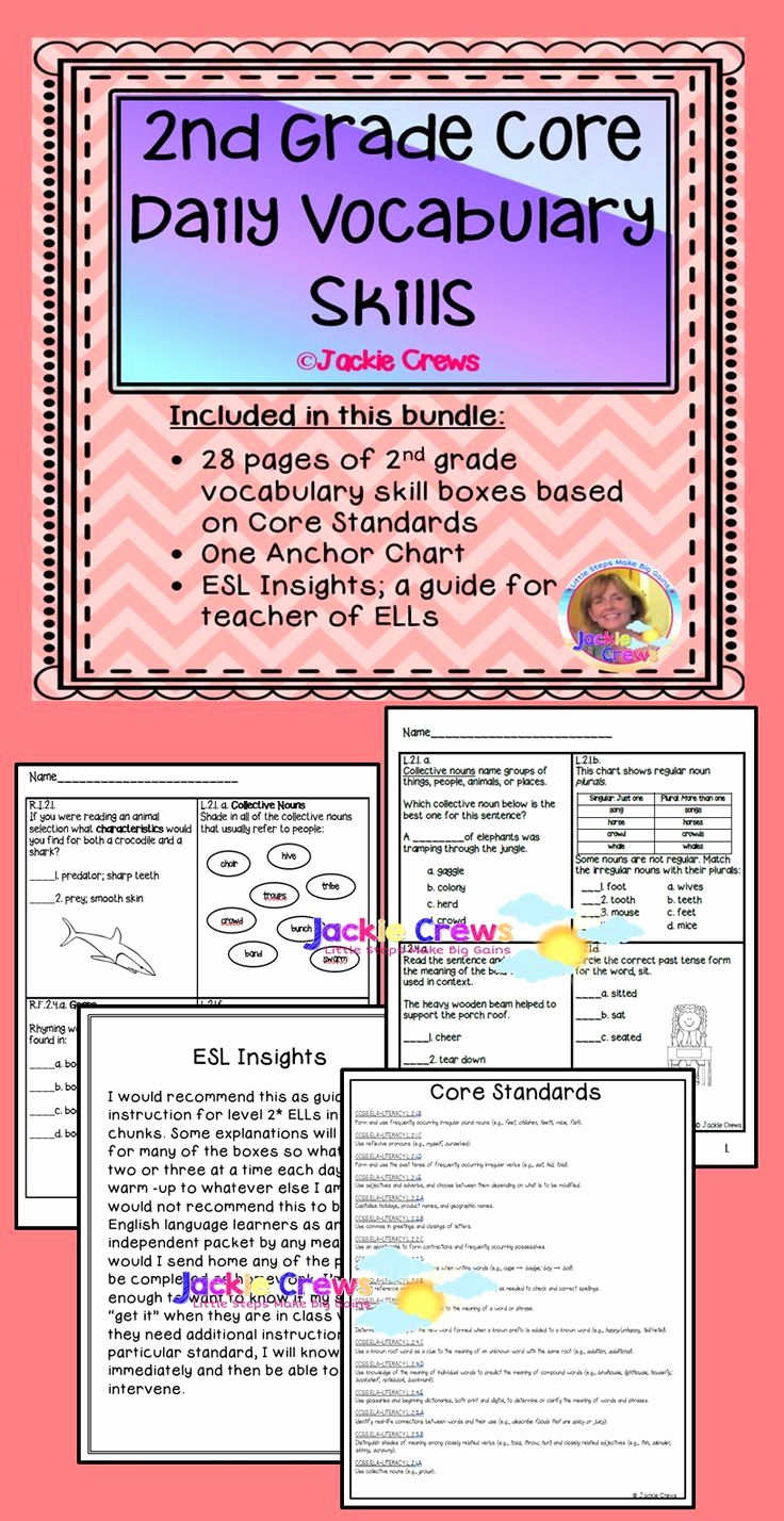Summary Worksheets 2nd Grade Awesome 2nd Grade Core Vocabulary Skills Review Boxes
