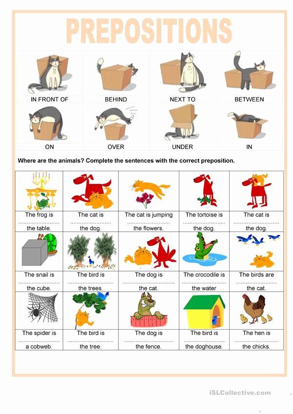 Super Teacher Worksheets Prepositions Unique Super Teacher Worksheets Prepositions