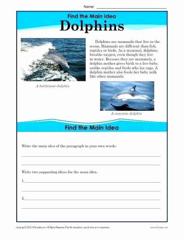 Text Evidence Worksheets 3rd Grade Best Of 25 Text Evidence Worksheets 3rd Grade