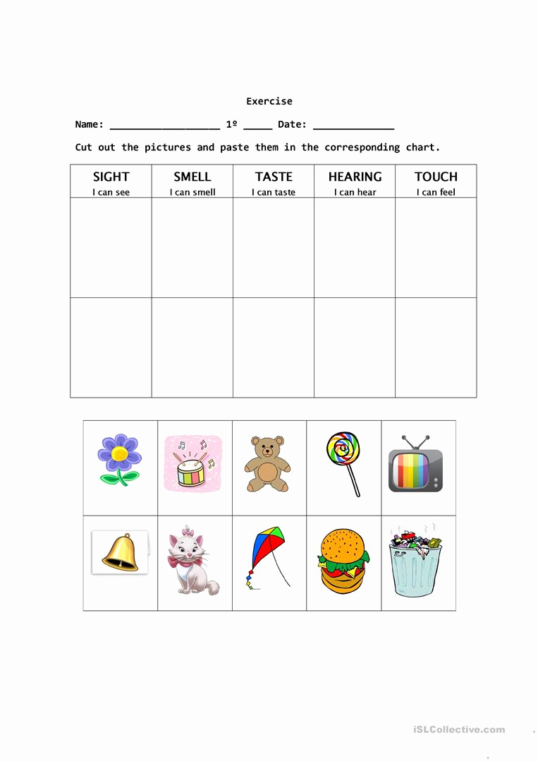 The Five Senses Worksheets Best Of the Five Senses English Esl Worksheets for Distance