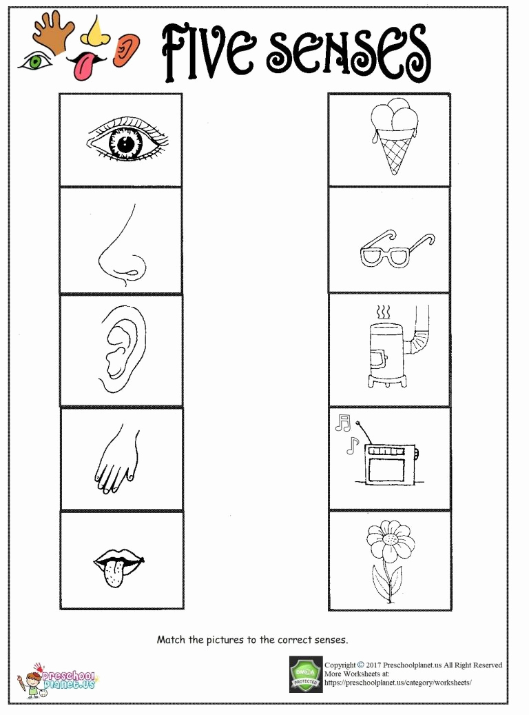 The Five Senses Worksheets Inspirational Printable Five Senses Worksheet – Preschoolplanet