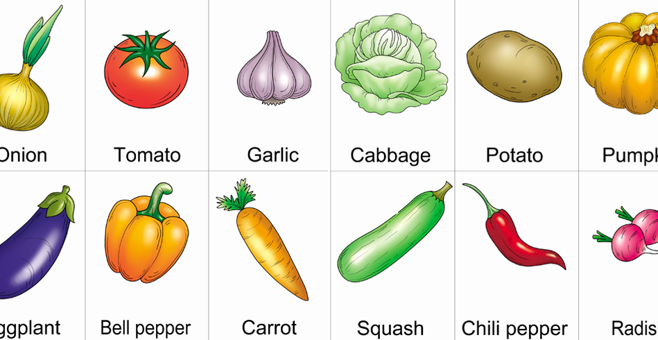 Vegetable Worksheets for Preschool Awesome Teaching Preschooler Preschool Ve Ables Worksheet for