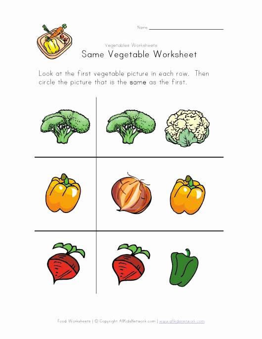 Vegetable Worksheets for Preschool Elegant Same Ve Able Worksheet