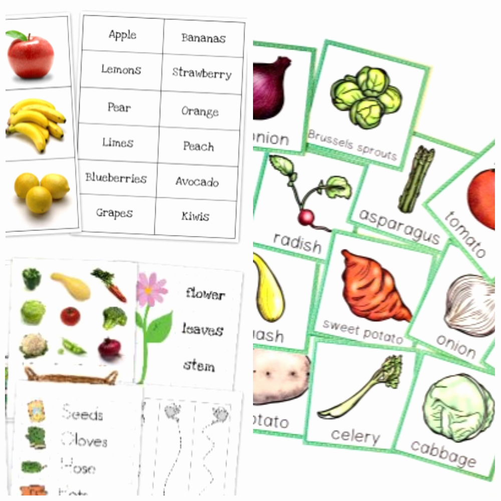 Vegetable Worksheets for Preschool Lovely 50 Ve Able Activities for Kids In Preschool and