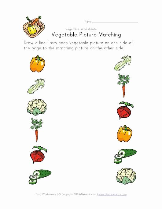 Vegetable Worksheets for Preschool Lovely Simple Ve Able Matching Worksheet